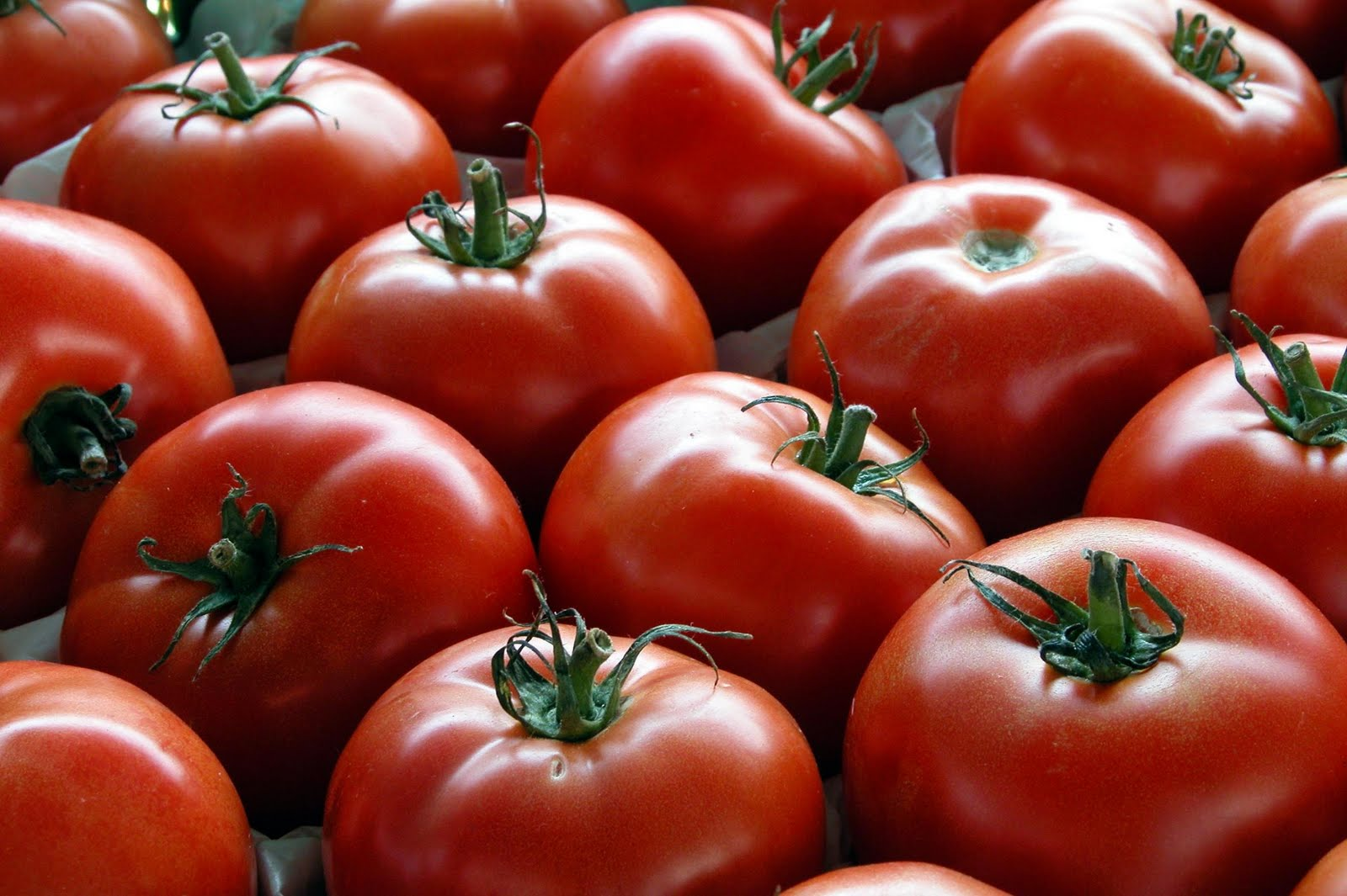 el sabor del tomate