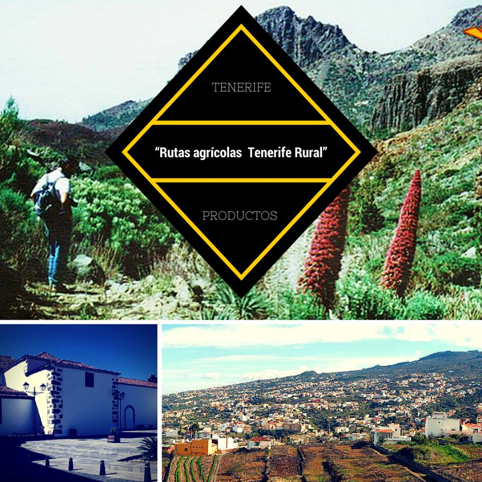 Tenerife Rural agricultural routes