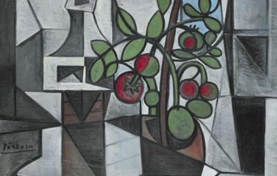 tomatenplant, Picasso