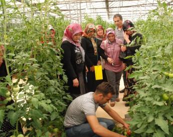 Turkey YEM trainings in Antalya PS