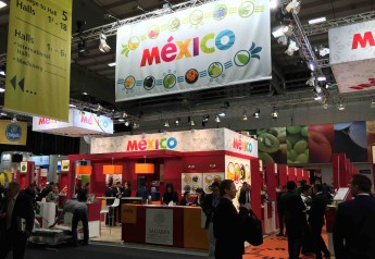 Stand de Mexico en Fruit Logistica 2015.