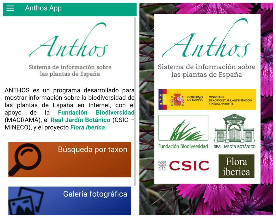 Anthos project