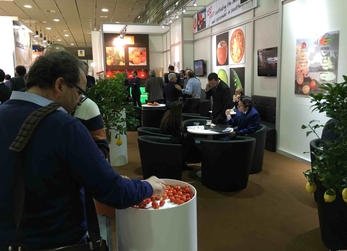 Fruit Logistica tomate canario 2016