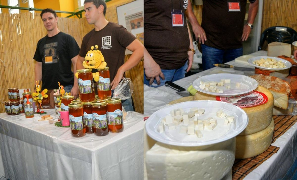 Regional Wine Fair, Canary cheese and honey